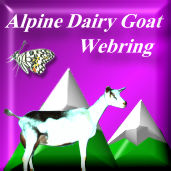 Alpine Dairy Goat Web Ring!!!!!
